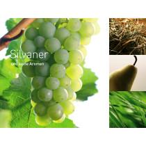 6721 - Leinwand Silvaner