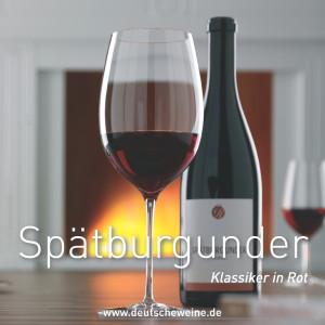 414 - Weinfilze  / Wine Coasters Spätburgunder VPE 100 Stück